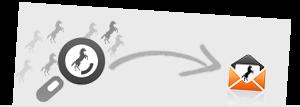 pferdevergleich24